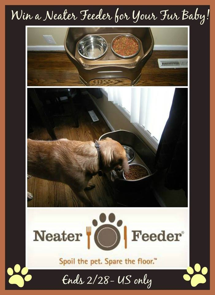 Neater Feeder Giveaway