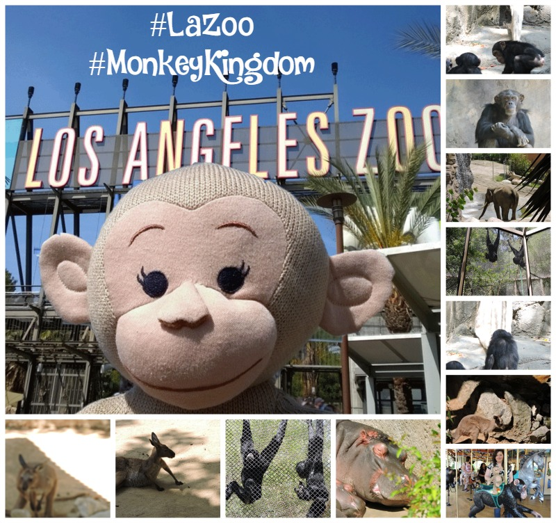 My trip to the #LaZoo for #AvengersEvent& #MonkeyKingdom