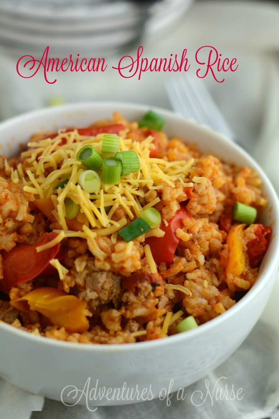 American Spanish Rice