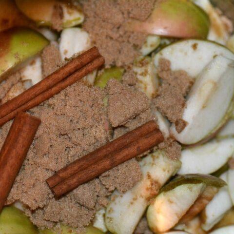 Instant Pot Homemade Hot Apple Cider