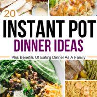20 Instant Pot Dinner Ideas