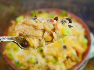 The ultimate instant pot fiesta chicken