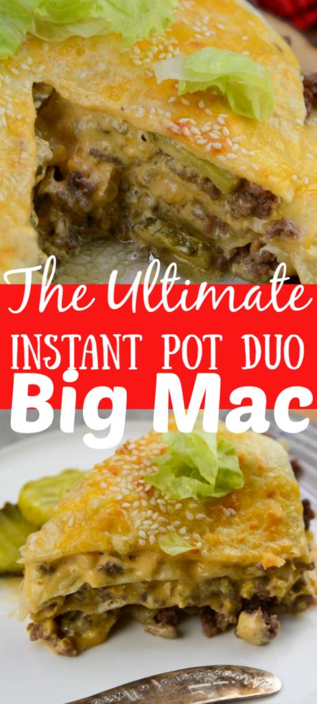 The Ultimate Instant Pot Duo Big Mac