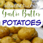 Instant Pot Duo Roasted Garlic