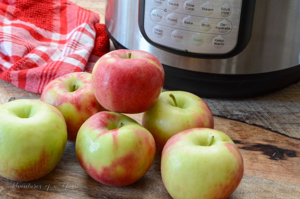 Instant Pot Air Fryer and Apples