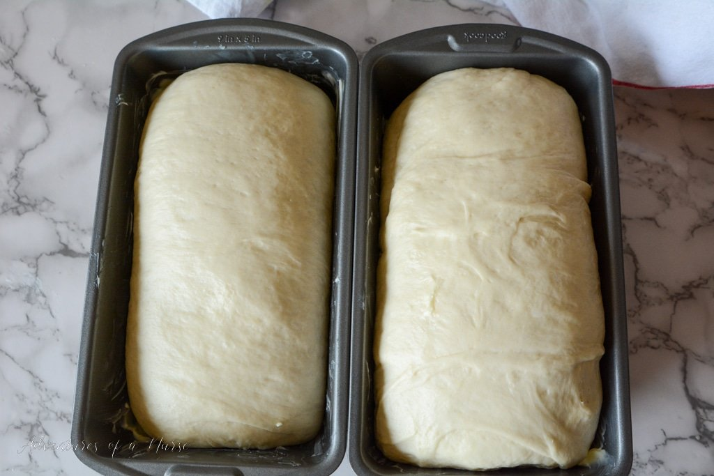 Amish White Bread ready for oven