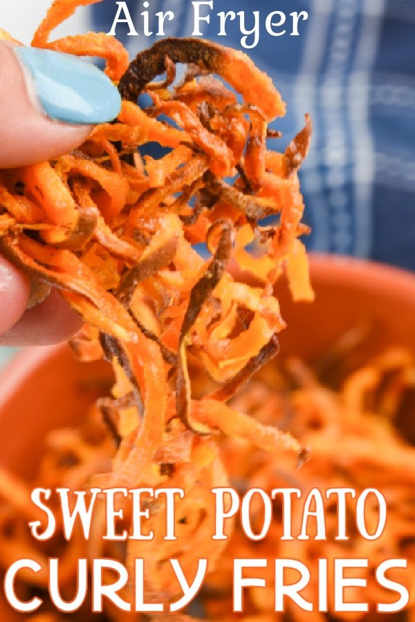 Air Fryer Curly Sweet potato fries